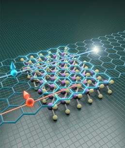 Giant spin lifetime anisotropy in graphene