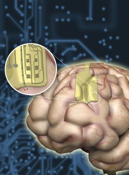 Multifunctional graphene-based neural probes