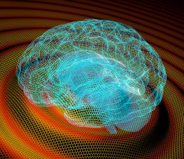 Graphene records infraslow brain waves. 2017