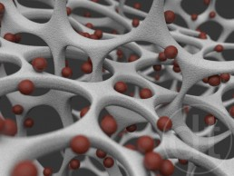 Nanoparticles attached to magnetic nanowires